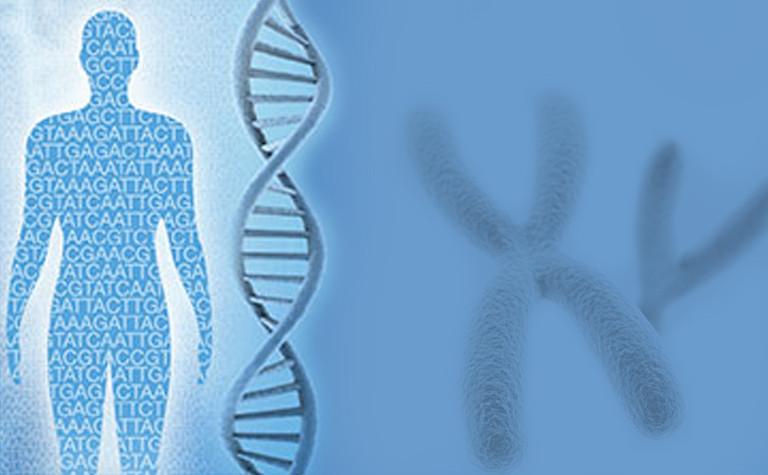 Next Generation Sequencing (NGS) - Shweta Mahajan