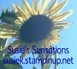 Welcome to Susie's Sunsations