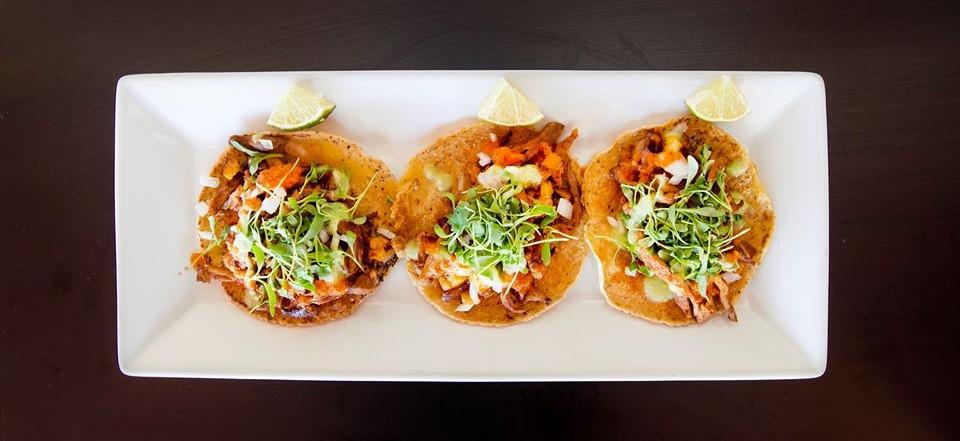 The Al Pastor Taco - El Cotorro