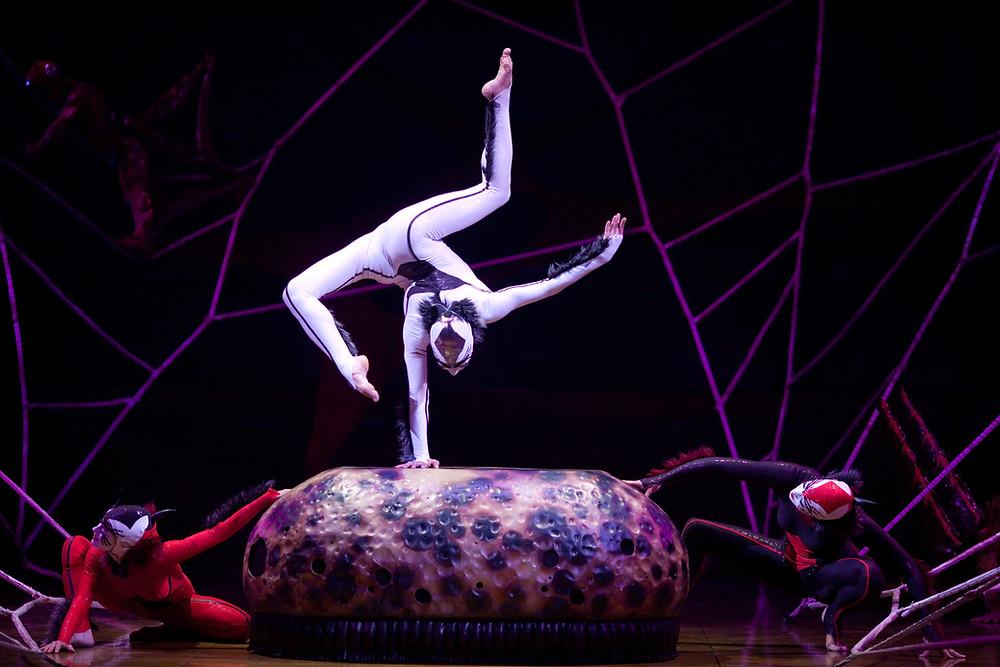 Spiders OVA OSA Images © 2009 Cirque du Soleil Inc.