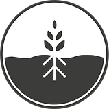 Body-Roots-Logo-Final.png