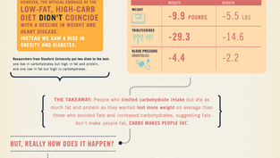 Do you know how carbs actually make us fat? Check out this great infographic!