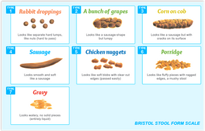 poop chart - Dr Laura Stix Kitchener-Waterloo Naturopath.png