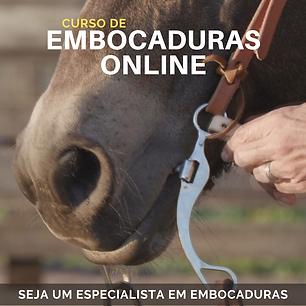 Curso Embocaduras Online
