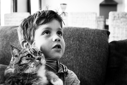 Boy-&-Cat-Josie-Gritten_4811.jpg