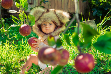 Baby in an apple orc