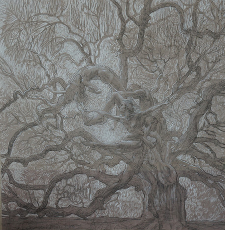 Tree of life -in white