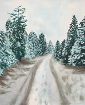 Winter Wonder Walks