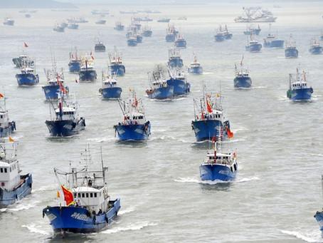 La flota pesquera china está vaciando los océanos