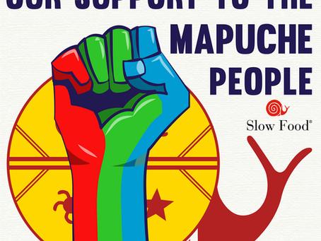 Mapuches de papel: un negocio ilícito basado en una tergiversación histórica que el Gobierno avala