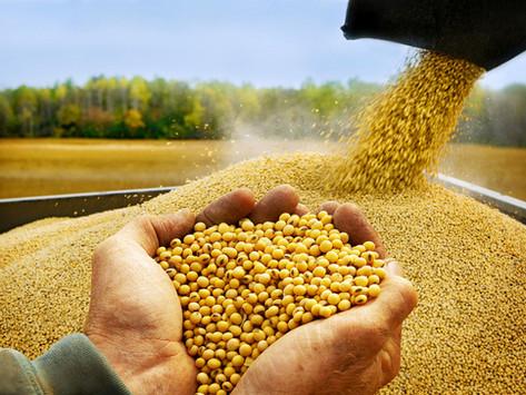 El nuevo superciclo de los commodities fortalece a los productores argentinos