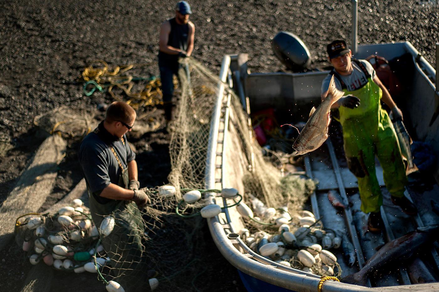 2016 Alaskan Fishermen