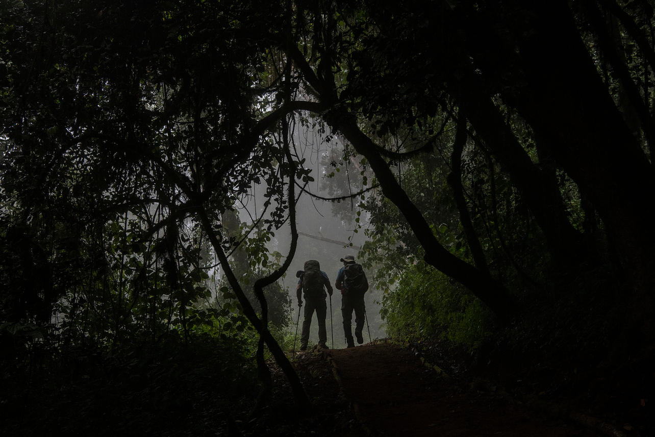 """Anthony """"Brandon"""" Matteson and Chris """"Yeti"""" Jackson trek through the rain forest on August 4, 2021 during day one of the eight-day climb to summit Mount Kilimanjaro."""