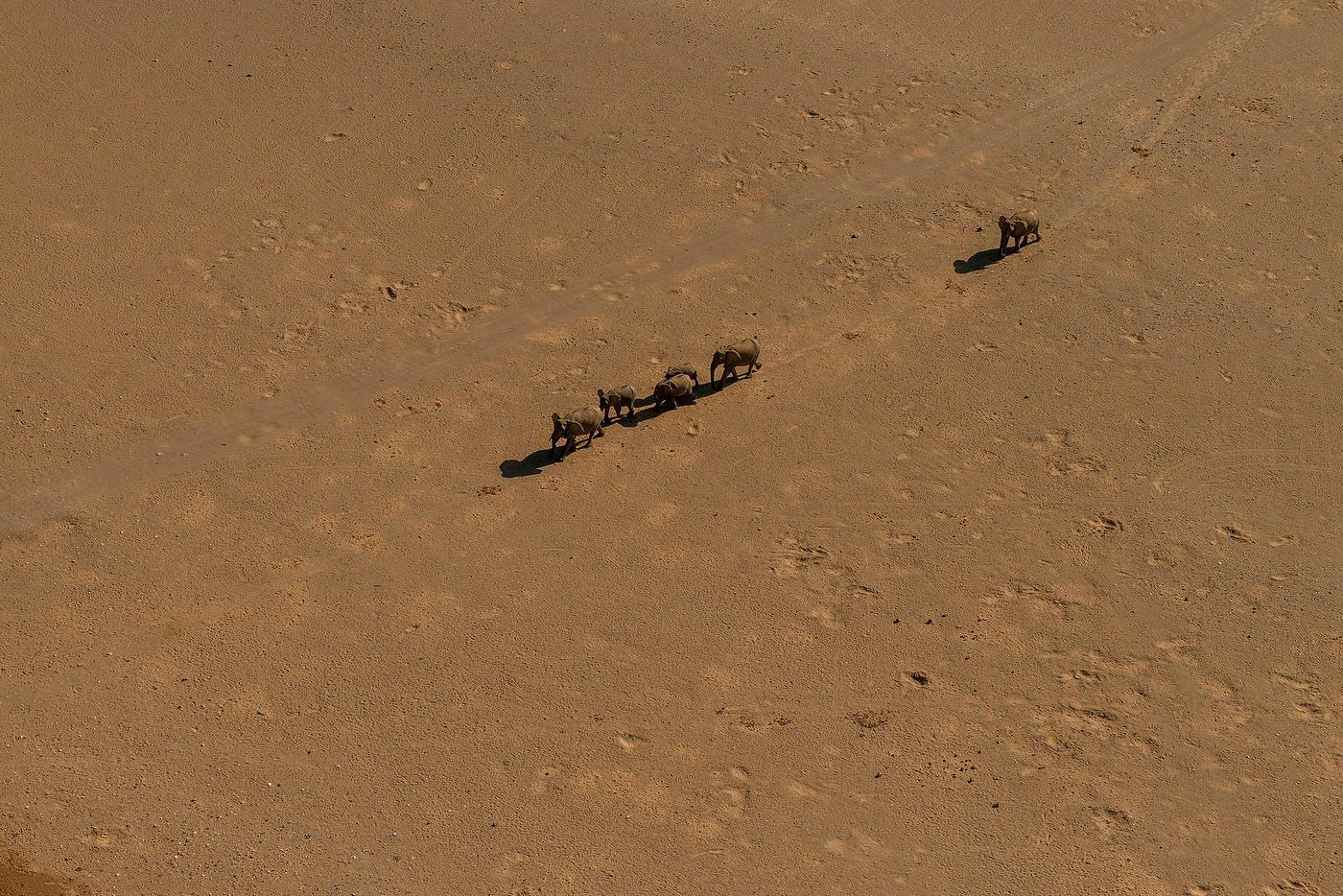 Namib Desert-003.JPG