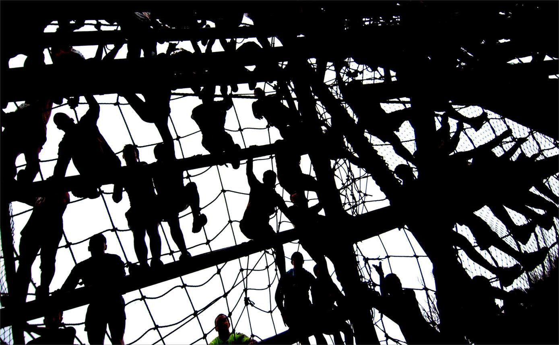 2005 Tangled Web