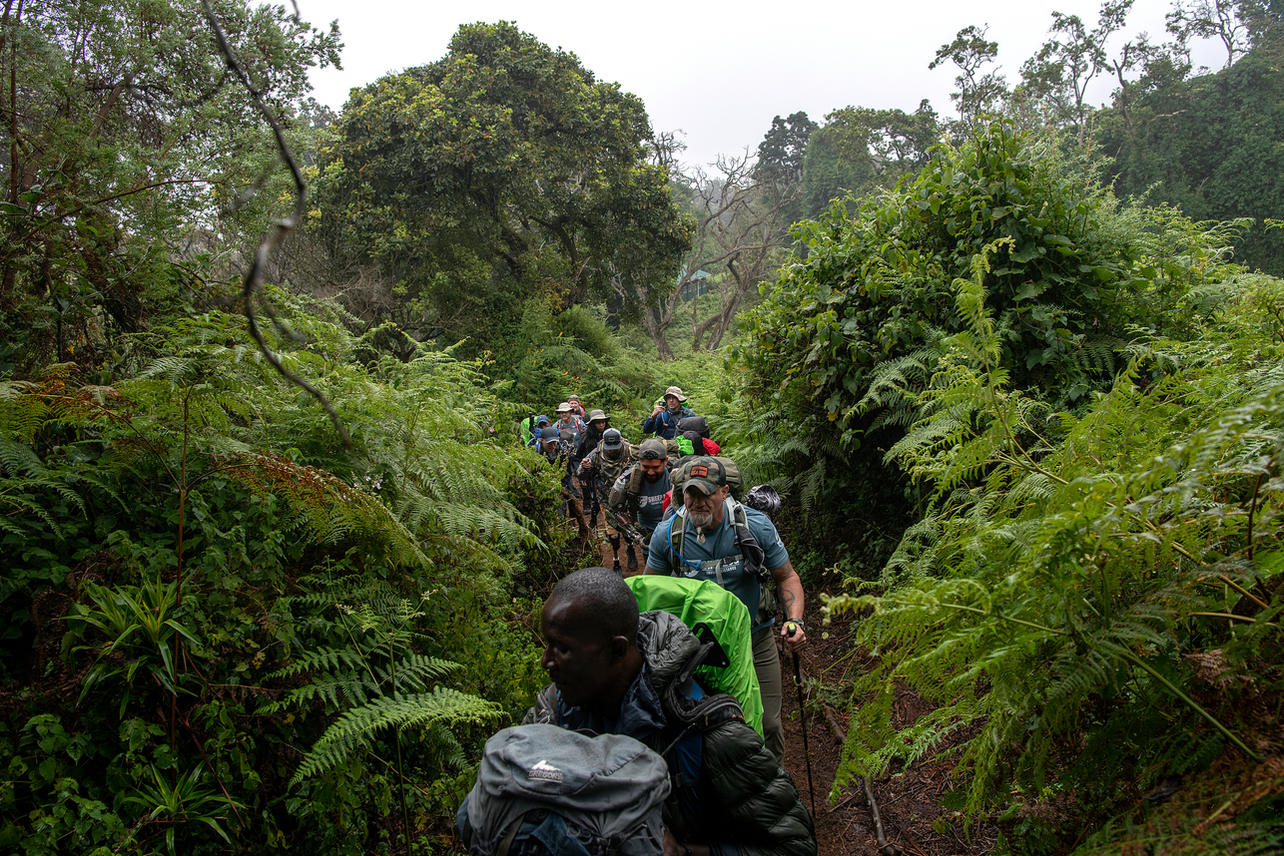 """On August 4, 2021 twelve climbers (mostly military veterans) from Sheep Dog Impact Assistance Kilimanjaro """"Climb for a Cause"""" (KCC) set out to trek the eight-day Lemosho Route in hopes of summiting Mount Kilimanjaro (19,342 feet) in Tanzania. The group started in the rain forest at an elevation of 6,890 feet."""