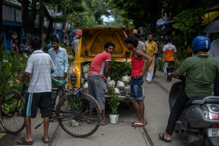 2018-Kolkata Cabs-028.JPG
