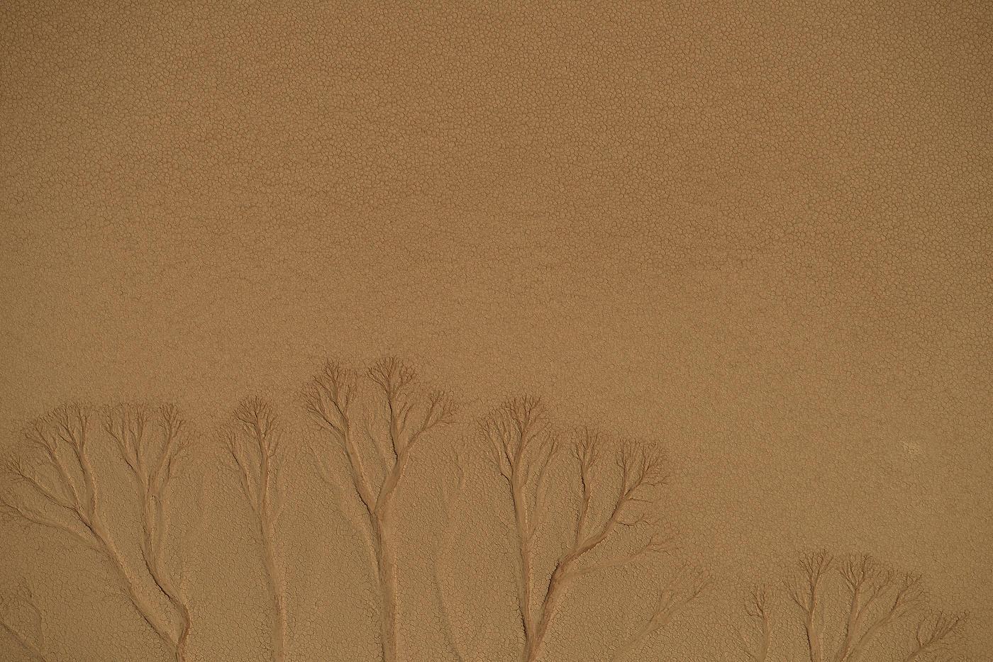 Namib Desert-009.JPG