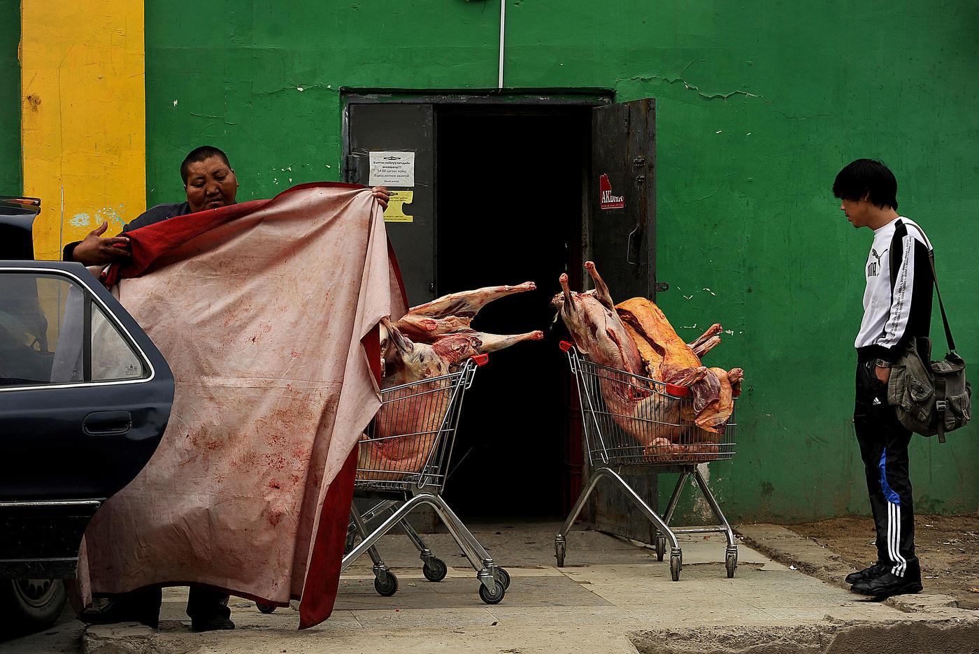 2012 Mongolian Butcher