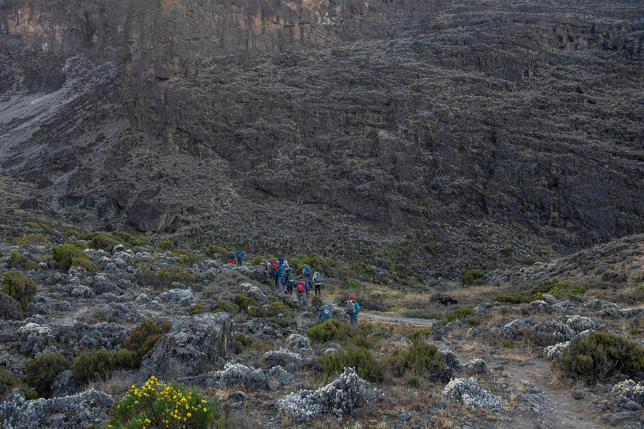 KCC team members start their day five trek by descending into a ravine to the base of the Great Barranco Wall on August 8, 2021 during an eight-day climb to summit Mount Kilimanjaro. The Barranco Wall is a ridge standing 843 ft that was formed when molten lava flowing from Kibo cooled on its slopes.