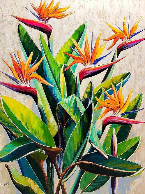 """Limited Edition on canvas """"Oiseaux du Paradis"""""""