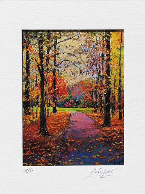 """Limited Edition """"Forêt de Bouleau"""""""