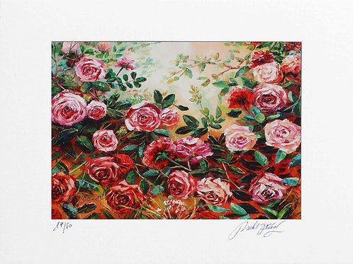 "Limited Edition ""La Roseraie"""