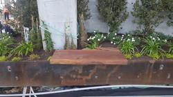 70 Rainey - Live Edge Ipe Wood Slab Benc