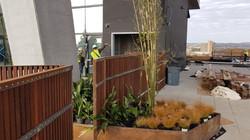 70 Rainey - Ipe Wood Slat Fence on Corte