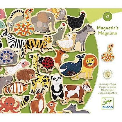 Animais Magnéticos - Djeco