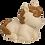 Thumbnail: Candeeiro Cavalinho