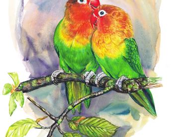 Les oiseaux de bonheur