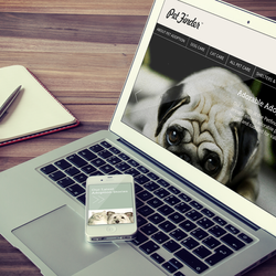 Branding & Web Design, Pet Finder