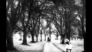 The Avenue, Barden Park c.1890