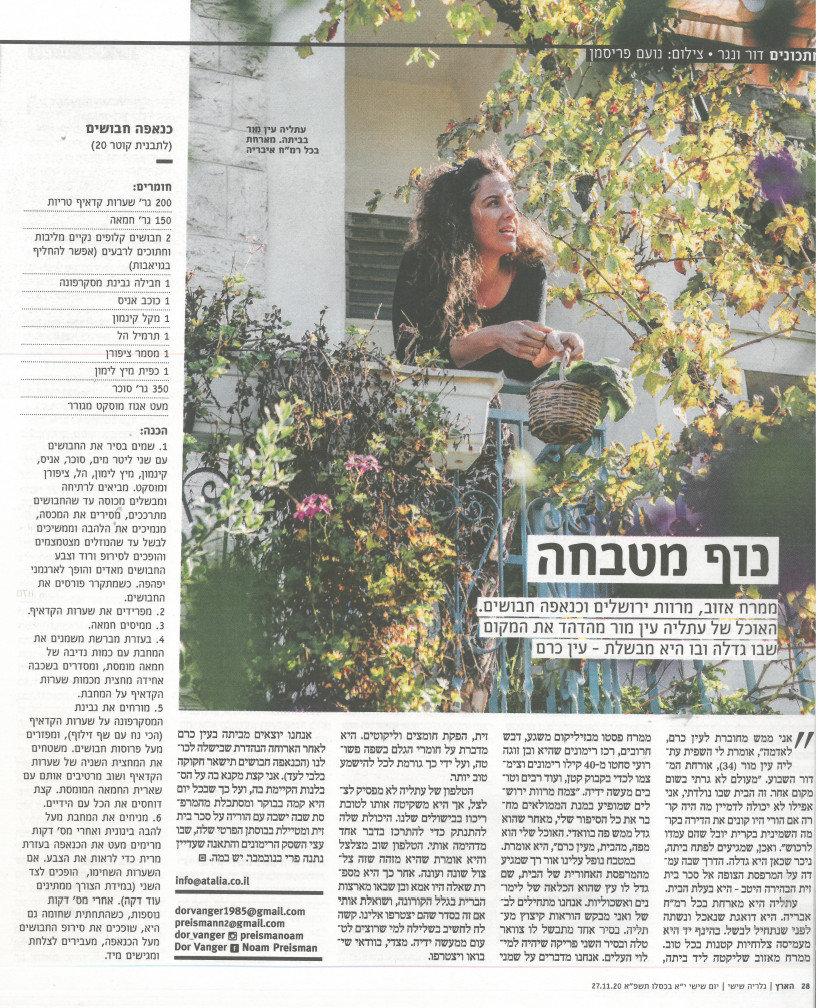 כתבה על תעליה בעיתון הארץ מוסף גלריה