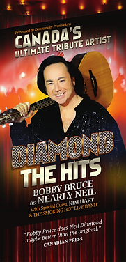 Nearly Neil The Hits Poster