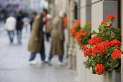 Paris in October? Several Enchanting Reasons To Go