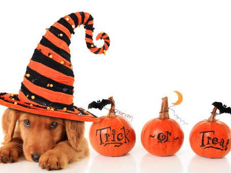 """It's Spooky – But True! Halloween Is The Latest """"IT"""" Holiday For Marketers"""