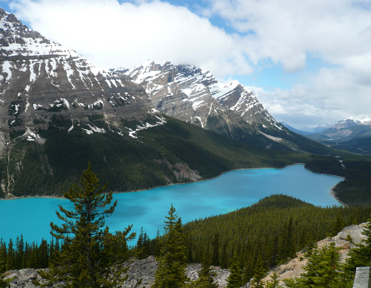 Rockies~Peyto Lake