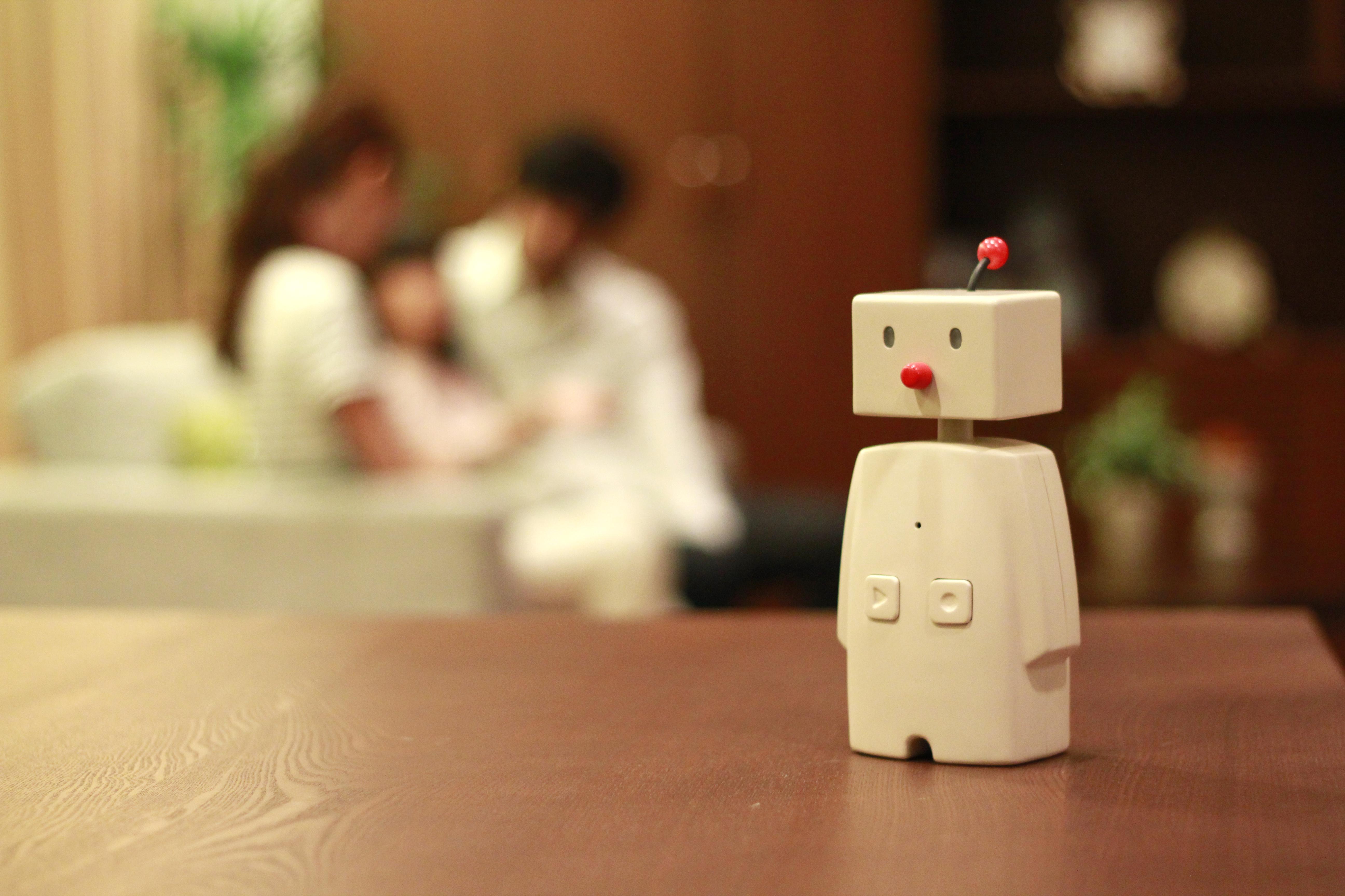 Bocco,a small desktop robot
