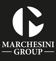 Marchesini_Group_vert_neg.png