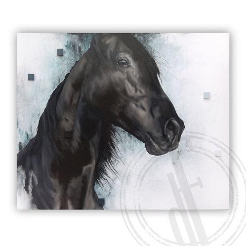 Equine XXVI