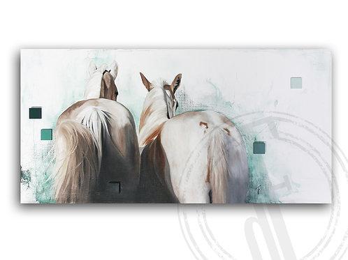 Equine XXVII