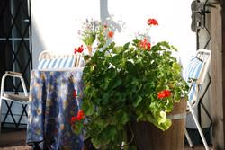 Familienappartement - Terrasse
