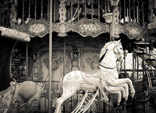 carhorse.jpg