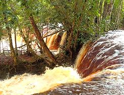 Cachoeira das Araras.jpg