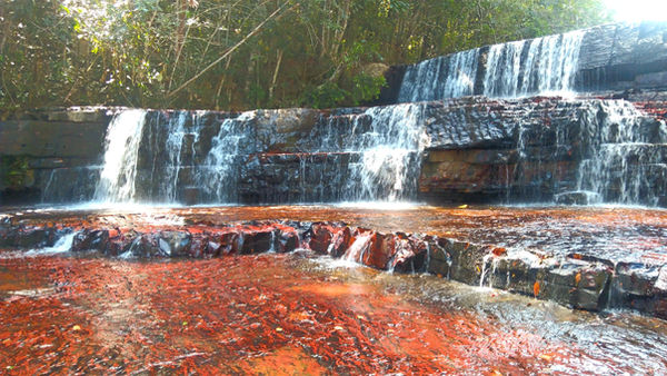 Passeio na Gran Sabana Amazon Destinations Turismo