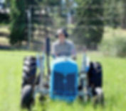 Graeme mowing the field with a Ford 8N tractor in Armstrong, BC