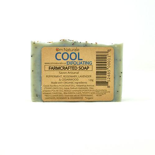 Organic Soap - Cool Exfoliating