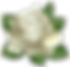 White_Rose_Transparent_PNG_Clip_Art_Pict